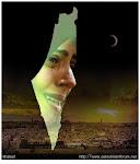 فلسطين بالصوت والصورة  شاهد هنا إنقرعلى الصورة