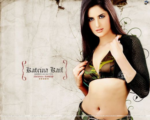 hot wallpapers of katrina kaif in bikini