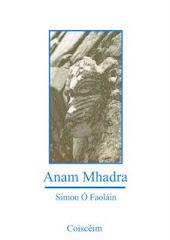 Simon Ó Faoláin