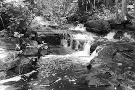 Trowbrige Falls