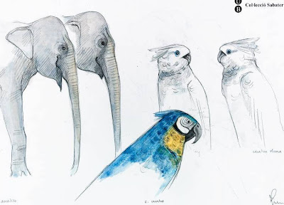 sketch of cockatoos and elephant