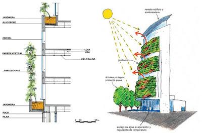 Ecourbanita aislamiento vegetal muros verdes for Muros verdes arquitectura