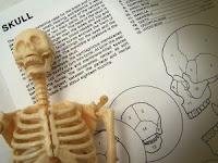 Massage and Pathology