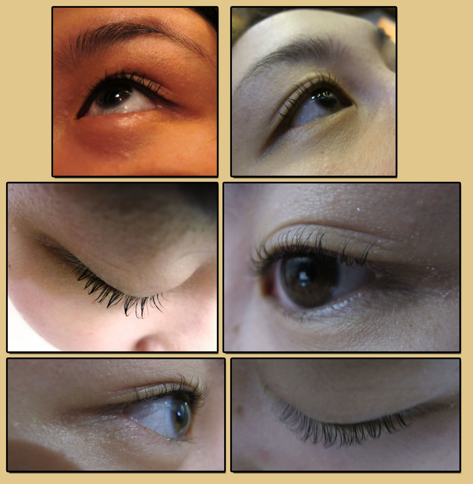 Make Up Mia Perm Lashes At Lets Face It