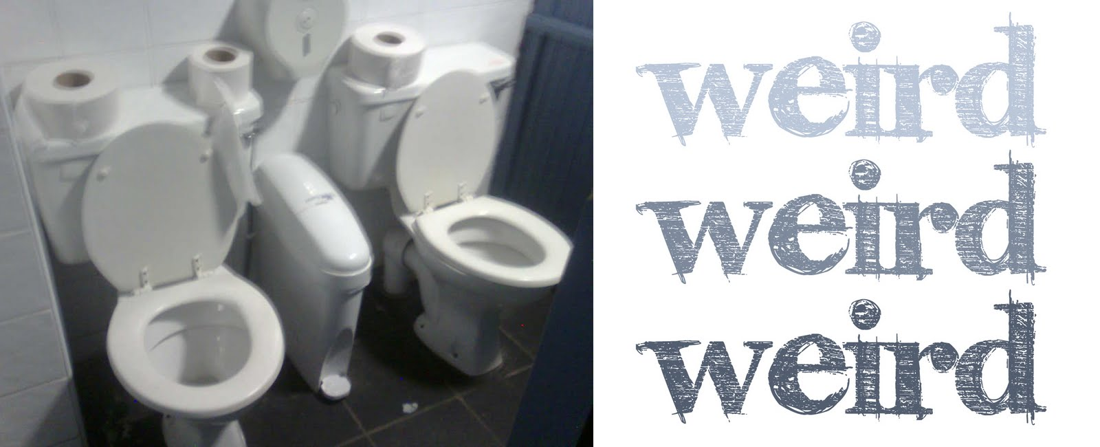 two in one toilet seat. Two toilets  One cubicle Now I could kind of understand this in a nightclub some description when girls are the level drunk that we ll pile into red lemonade Bog Down In The Valley O