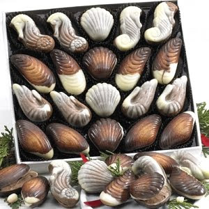 box of seashell chocolates