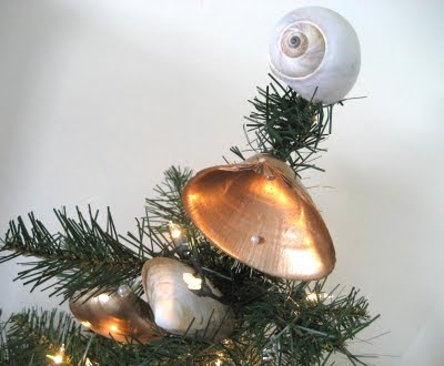 moon shell as tree topper