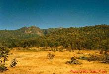 Bori Sanctuary