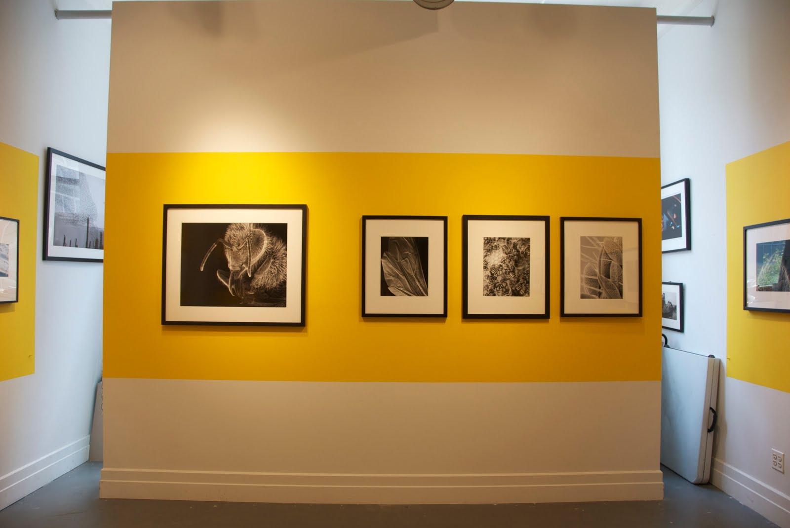 Farmani Gallery