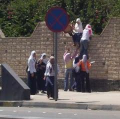 يا حلاوة علي التعليم يا بلدنا--- يا بناتك يا مصر