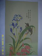 1. Iris 21x35cm