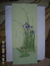 31.Irisi 18x45cm