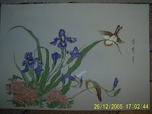 51. Irisi 36,5x25,5