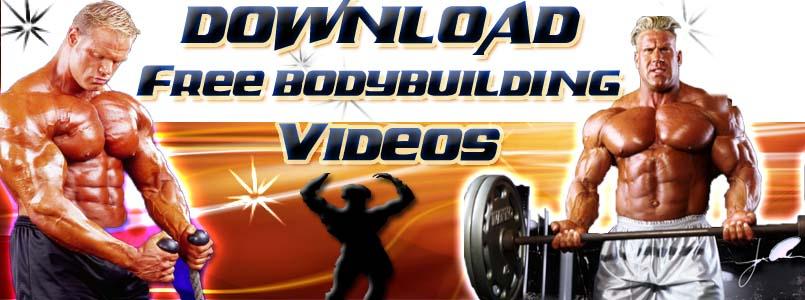 arnold schwarzenegger bodybuilding pics. arnold schwarzenegger