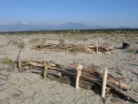 Fascinate di legno spiaggiato