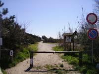 Sentiero nella Lecciona