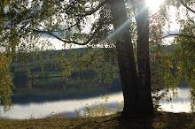 Sjön Rottnen