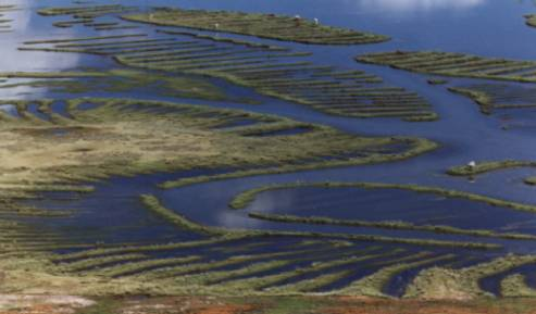 agriculture in the incan empire essay Inca agriculture abandoned ancient incan agricultural terraces comprise the largest western desert that produced the highest crop yields in the inca empire.