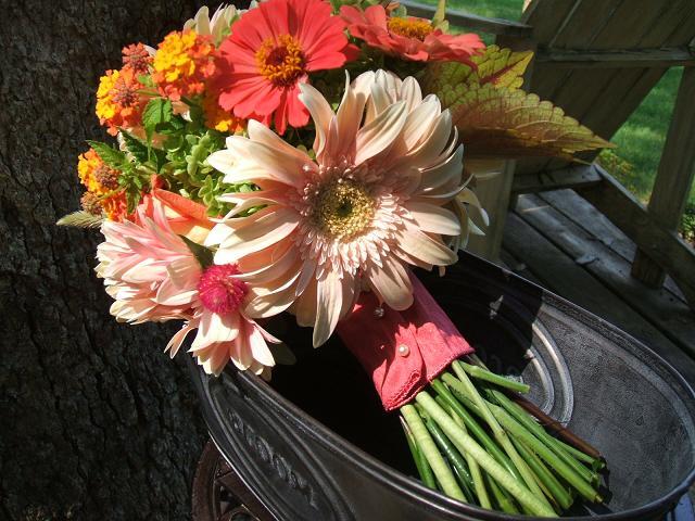 Wedding Flowers from Springwell: Summer Wedding Flowers in Warm Corals