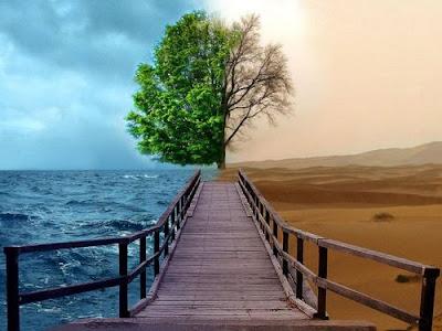 Estrada da Vida