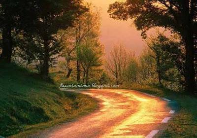 caminho,estrada longa,paisagem,natureza