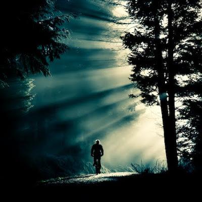 caminhos,luz,tempo,estrada,natureza