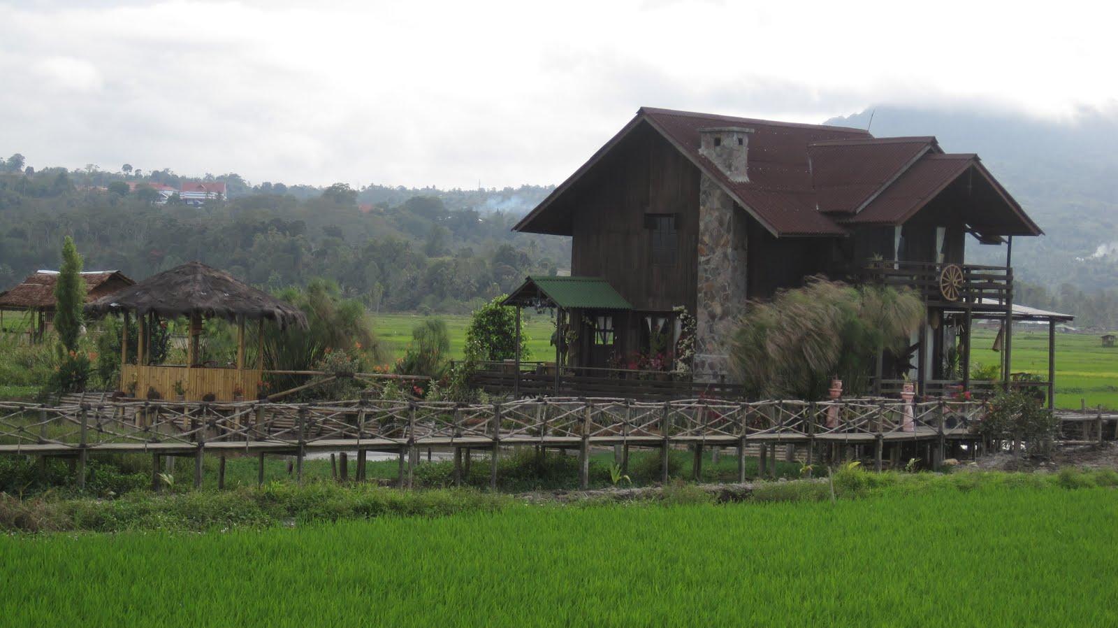 potret indonesiaku rumah sawah