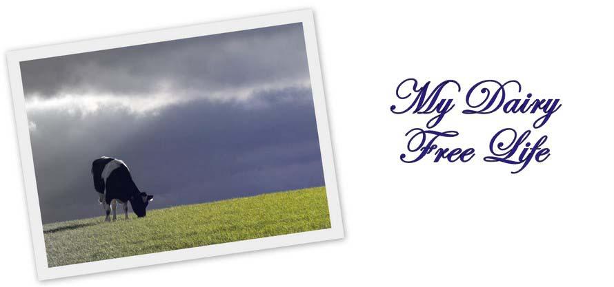 Ma Vie Sans Laitage - My Dairy Free Life