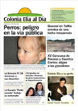 NOTICIAS DE LAS COLONIAS ENTRERRIANAS