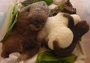 babies and sloth wee