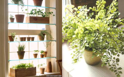 Leroy merlin plantas artificiales wroc awski informator for Flores artificiales leroy merlin