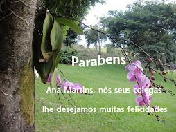 """Parabens"""