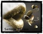 Premio Samoga