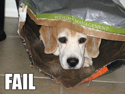 [Weight+Management.jpg]