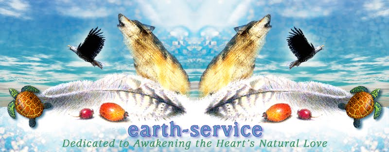 Earth-Service: Dedicated to Awakening the Heart's
