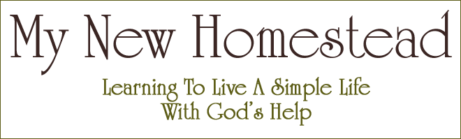 My New Homestead Learning To Live A Simple Life, With God's Help