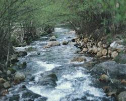 ¿Cuánto sabes del tiempo atmosférico y los ríos?