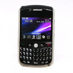 Blackberry 8900 China Phone