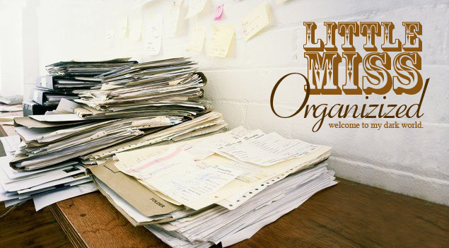 Little Miss Organizized: 101 Things in 1001 Days