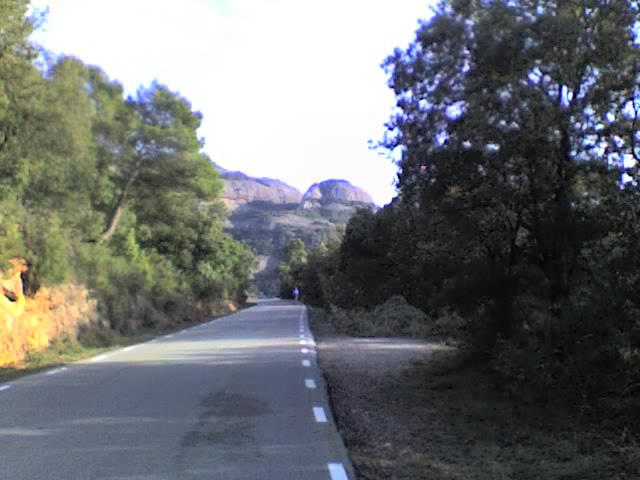 wwwlacarteleramihosteu