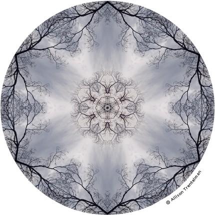 The design alphabet nature mandalas - Mandala nature ...
