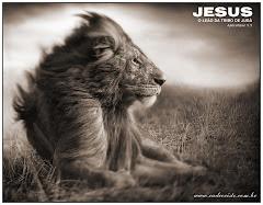Jesus o leão da tribo de Judá  Ap 5.5