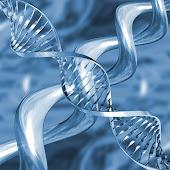 DNA infinito