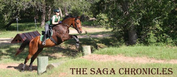 Saga Chronicles
