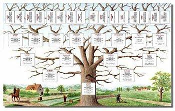 Albero genealogico e traumi