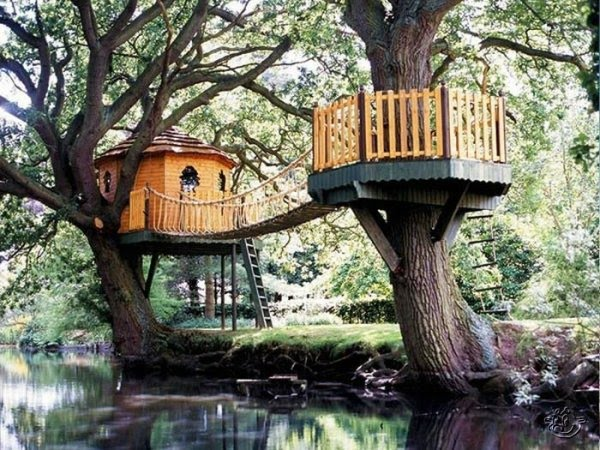 Creative Tree House Ideas Around The World Curious