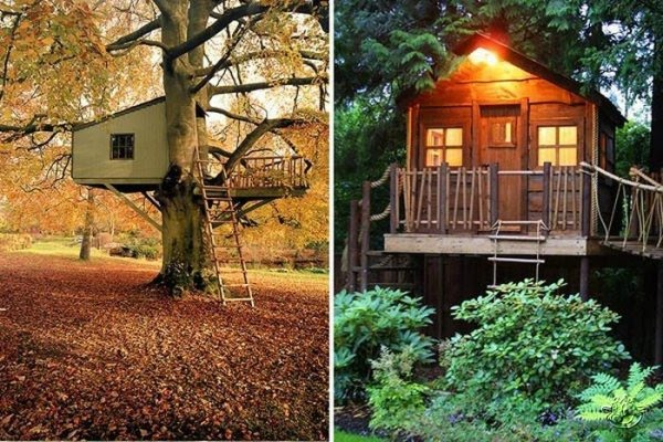 Creative tree house ideas around the world curious for Tree house ideas plans