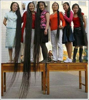 Model Rambut Dengan Gaya Yang Aneh Dan Gokil