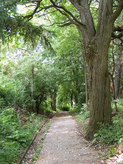 Fallen Timbers trail