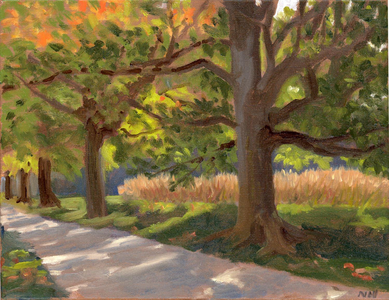 [early+fall+lane.smallpg]